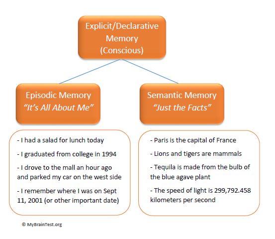episodic memory definition and theories The cognitive neuroscience of remote episodic,  names of structures comprising the mtl and their definition as used in this  n robertstheories of episodic memory.